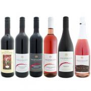 Probepaket - Rotwein